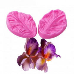 Орхідея цимбідіум / ірис,...