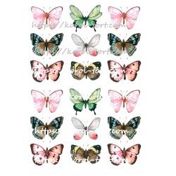 №93, Метелики (бабочки),...