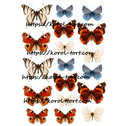 №94, Метелики (бабочки),...